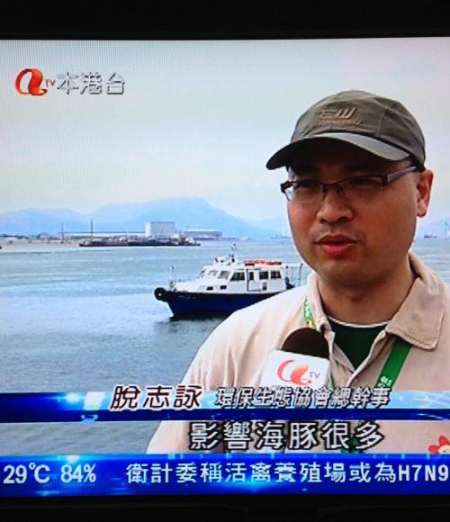 海豚哥哥:打椿需要好好嚴格監督、違法者受警戒,否則生靈塗炭。
